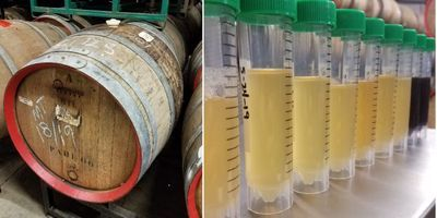 The Chemistry of How Sour Beer Gets So...Sour