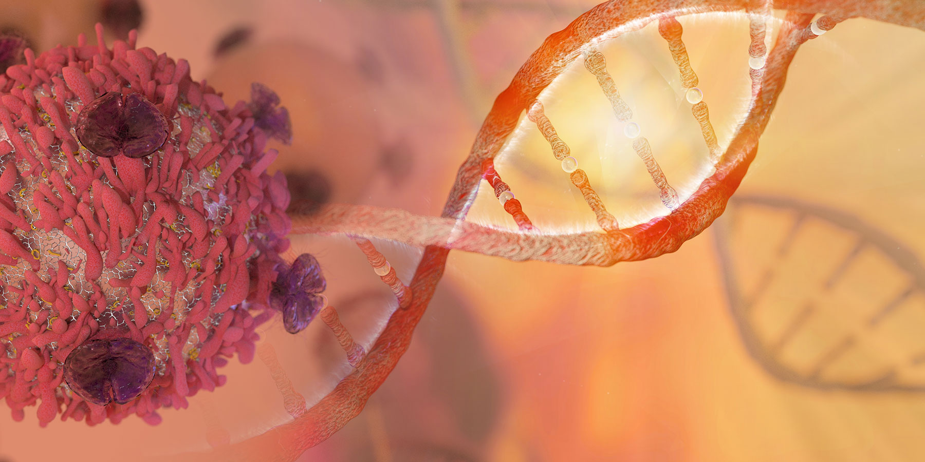 Researchers Discover How Enzyme Protects Cells from DNA Damage