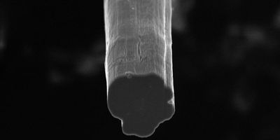 No Limit Yet for Carbon Nanotube Fibers