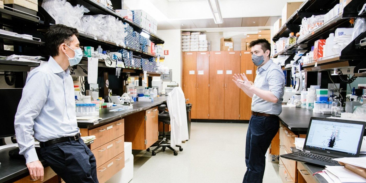 Researchers Perform Energy Audit of Human Cells