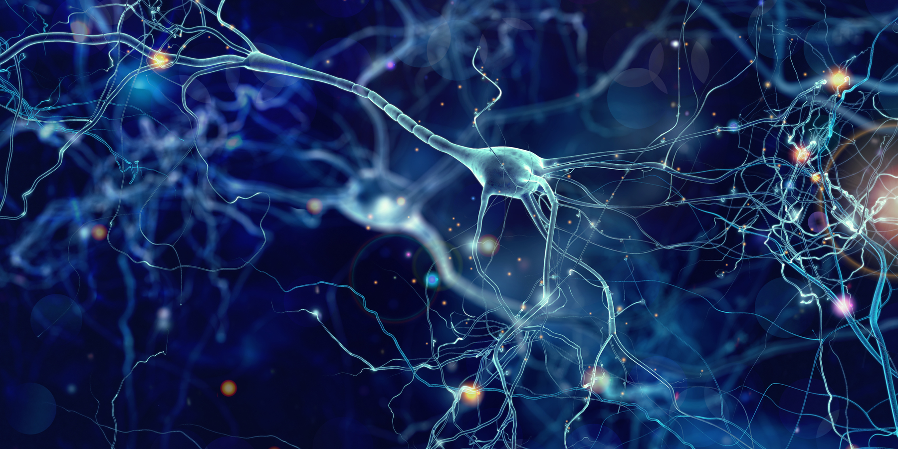 Study: The Speed Neurons Fire Impacts Their Ability to Synchronize