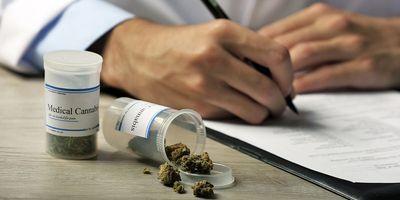Bruker and Purity-IQ Sign Partnership Agreement to Transform the Cannabis Regulatory Landscape