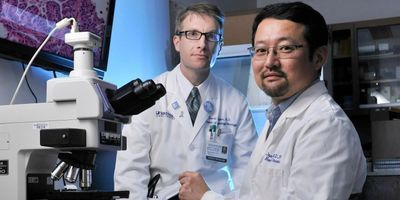 Study: Levels and Anti-Tumor Effectiveness of a Common Drug Vary Widely