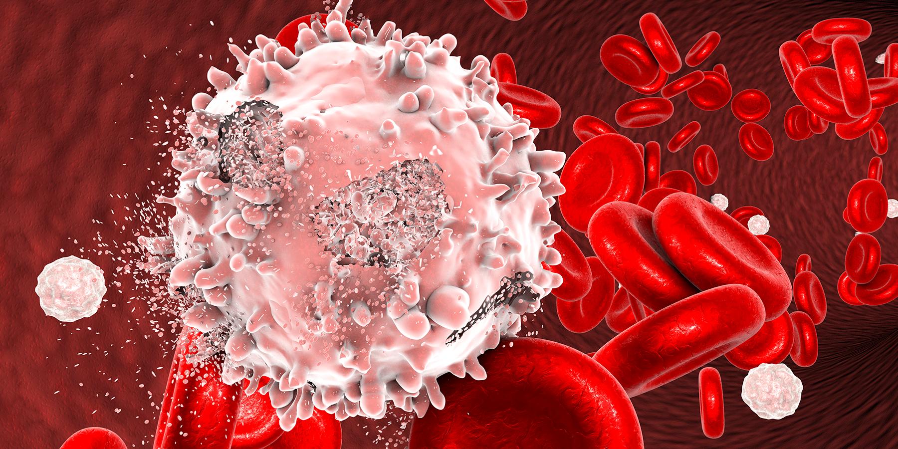 Human White Blood Cells Use Molecular Paddles to Swim
