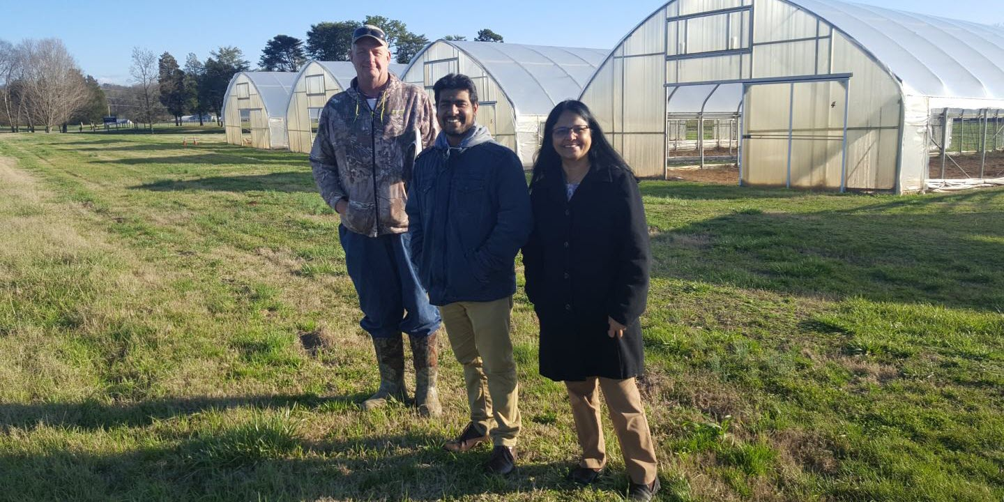 New Study to Examine Organic Production of Grains