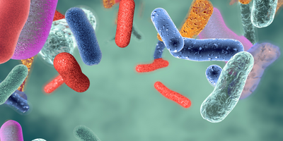 Report: Safety and Effectiveness of Fecal Microbiota Transplantation