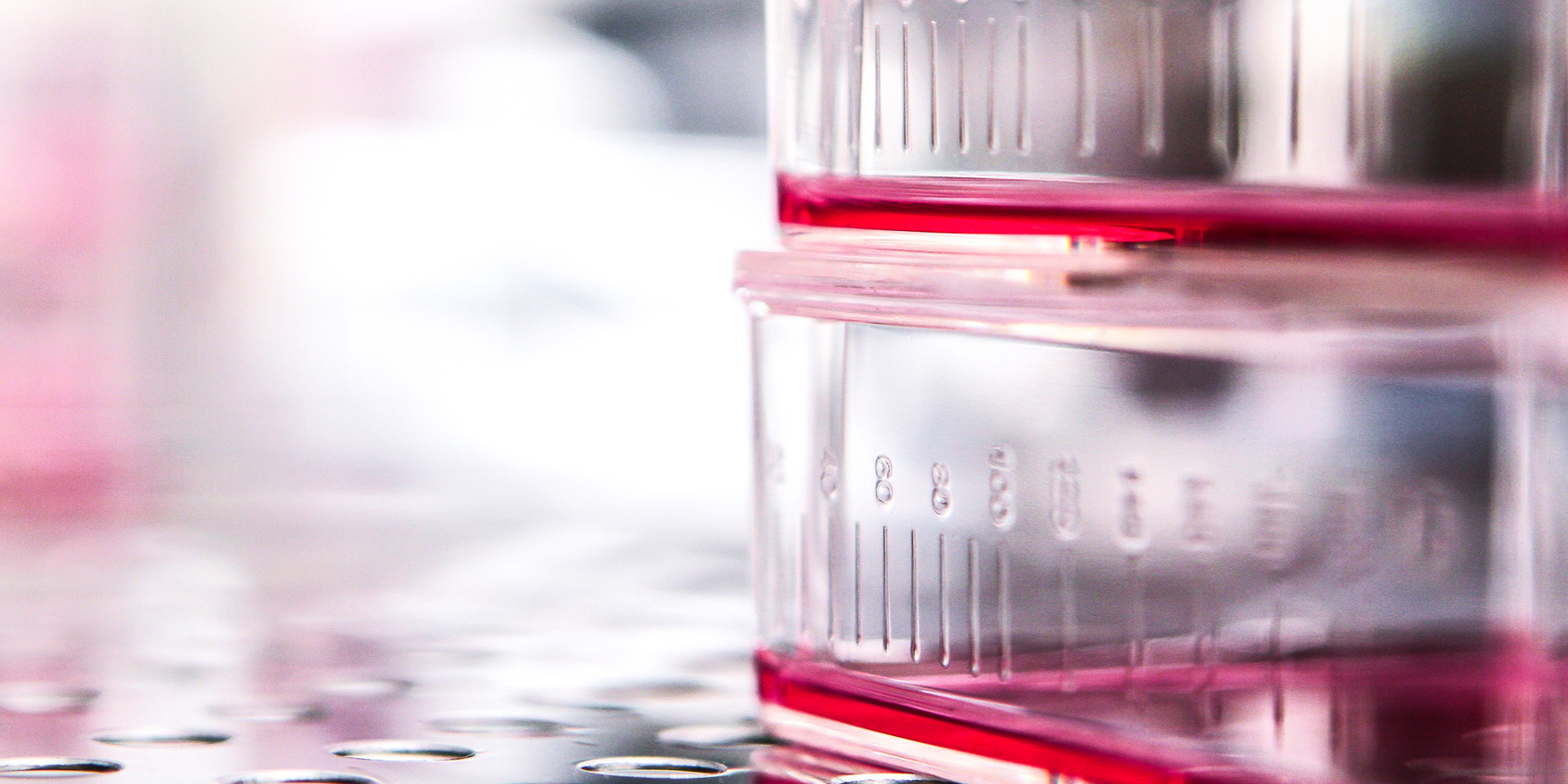 How to Improve Your Cell Culture Process with Quantitative Data