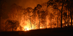 Study: Act Now on Wildfires, Global Climate Change, Human Health