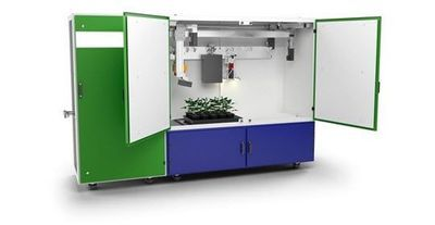 Multisensor Plant Phenotyping System Delivers Standardized Data