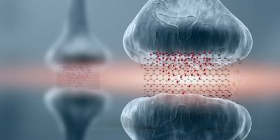 Graphene-Based Memory Resistors Show Promise for Brain-Based Computing