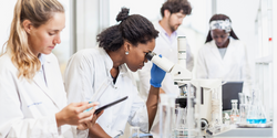 First US Nationwide Estimates of Sexual Minority Representation in STEM Fields