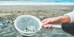 Study Reveals How Plastic Pollution Travels