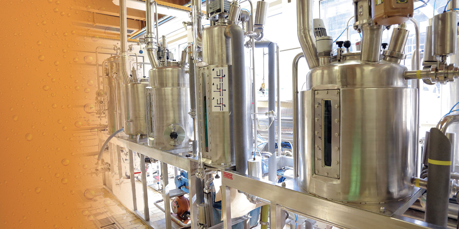 Automated Brewing Lab Helps Hone Biochemistry Skills