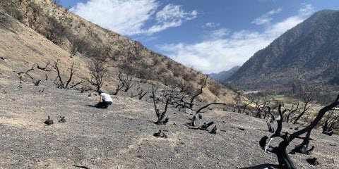 Experimenting in Space to Help Prevent Mudslides on Earth