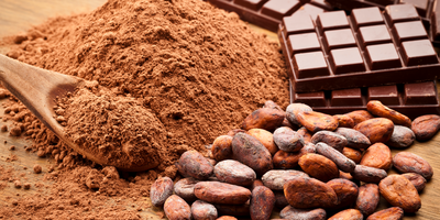 Cocoa Flavanols Boost Brain Oxygenation, Cognition in Healthy Adults