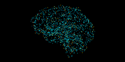Scientists Identify New Genetic ALS Risk Factor in Junk DNA