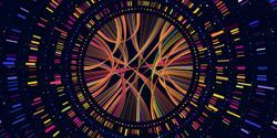 New Software Cuts Time, Cost from Gene Sequencing