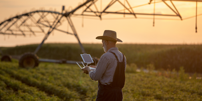 Drones and AI Detect Soybean Maturity with High Accuracy