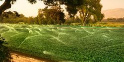 Big Data Offers Promise of Better Groundwater Management