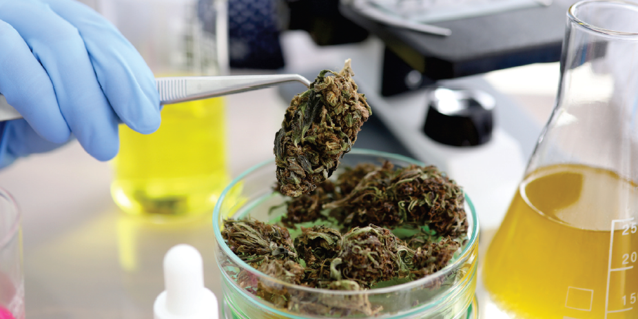 The Benefits of ISO 17025 for a Cannabis Lab