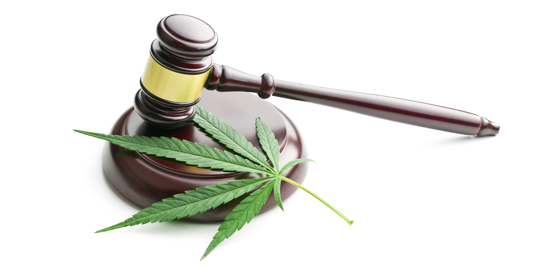Medical Cannabis and CBD Regulations Are Becoming a Crucial Global Patchwork to Operations