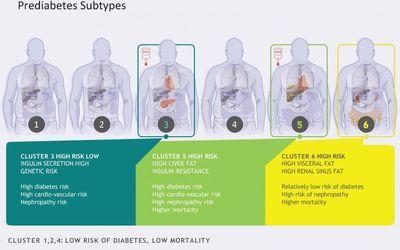 Prediabetes Subtypes Identified