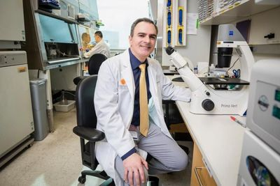 Researchers Uncover a Potential Treatment for NSCLC