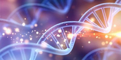 Cell Free Nucleic Acid Extraction