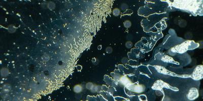 New Metamaterial Offers Reprogrammable Properties
