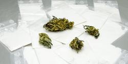 Study: Cannabidiol Ineffective in Treating Cocaine Addiction