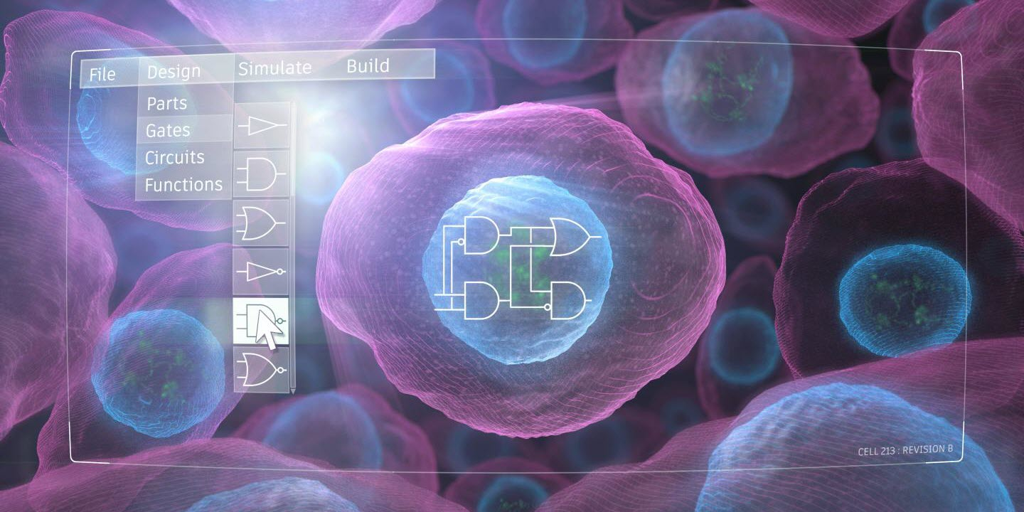 New Technology Enables Predictive Design of Engineered Human Cells