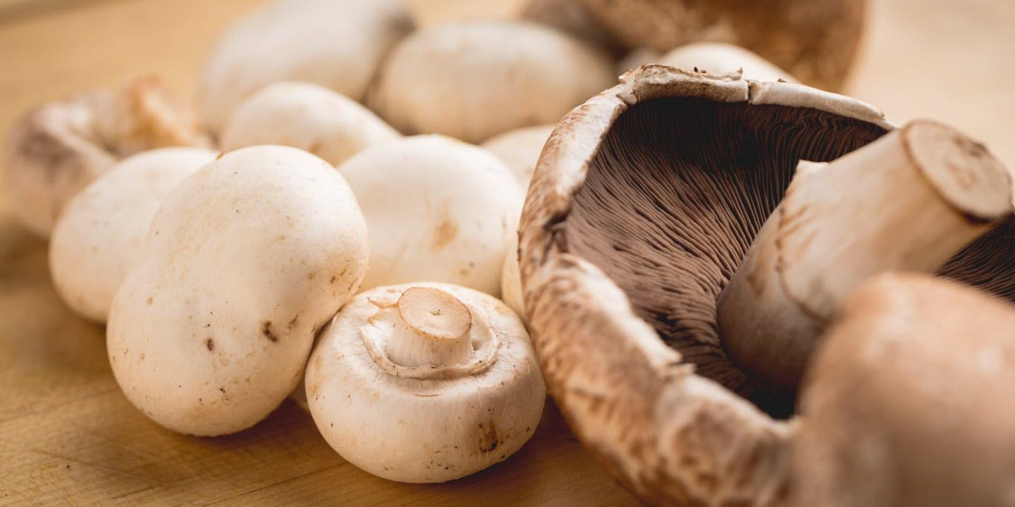 Mushrooms Add Key Nutrients When Included in Typical Diet
