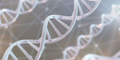 Landmark Study Details New Human Reference Genomes