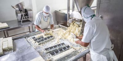 Science Takes Guesswork Out of Cheese Production and Reduces Waste