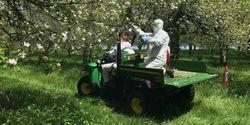 Floral Probiotics Reduce Apple Disease, Scientists Find