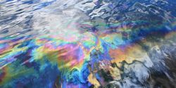 Recyclable Bioplastic Membrane to Clear Oil Spills from Water