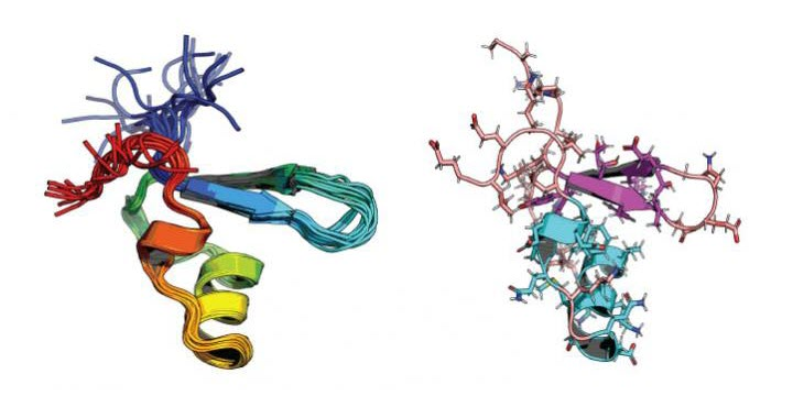 Atomic Techniques Reveal the Evolution of a Bacterial Protein