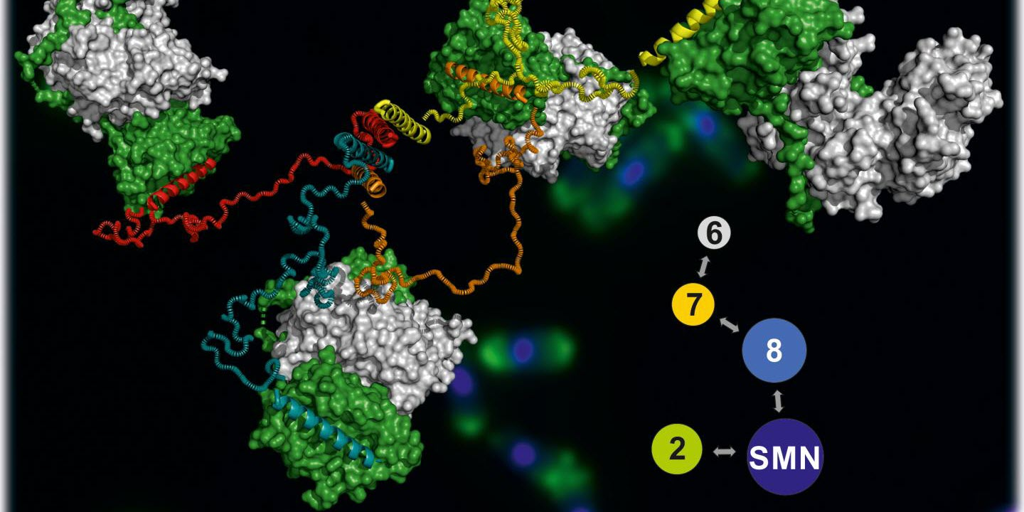 First 3D Images of a Giant Molecule