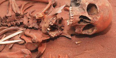 Examining Forensic Anthropology's Knowledge of Transgender Bodies