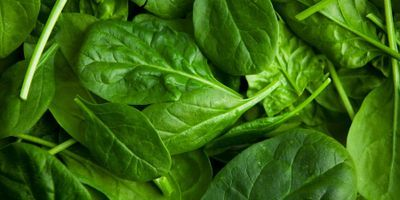 How Spinach Could Help Produce Lab-Grown Meat