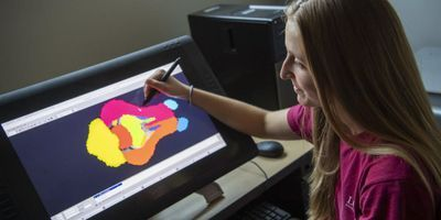 New Pig Brain Maps Facilitate Human Neuroscience Discoveries