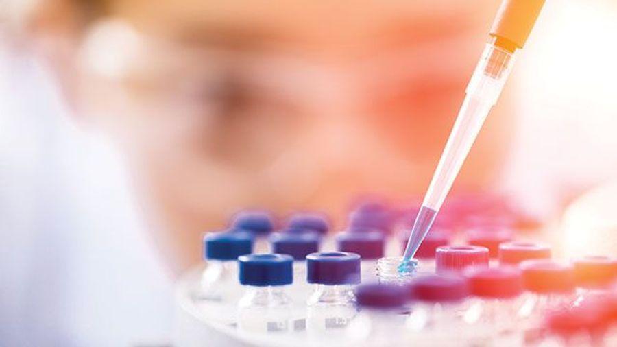 PD Biomarkers Drive Drug Development
