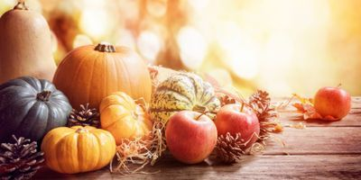 Studies Bring New Insight into Apple and Oil Pumpkin Microbiomes