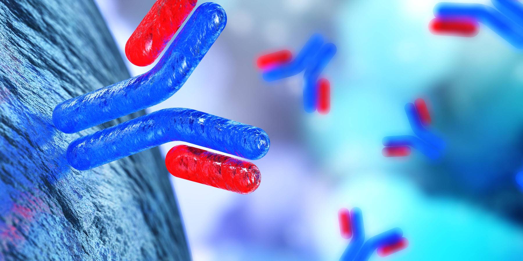 Cytosections for Antibody Screening and Immunohistochemistry Protocol Development