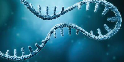 Characterizing RNA Molecules with FTIR