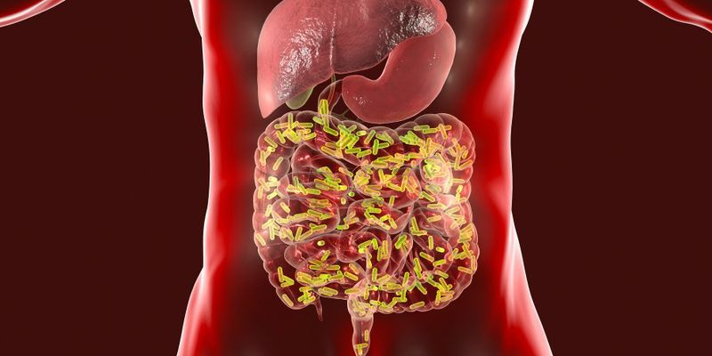 The Microbiome and COVID-19