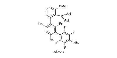 Sinocompound Expands Range with New Advanced High-Quality Buchwald Ligands and Precatalysts