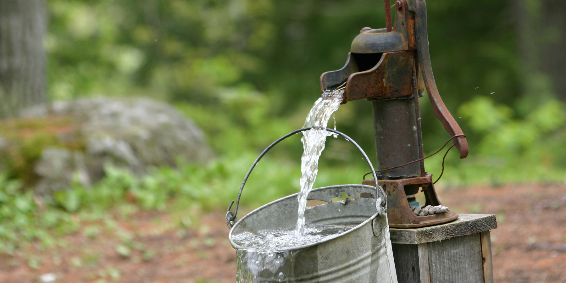 How Viruses and Bacteria Can Reach Drinking Water Wells