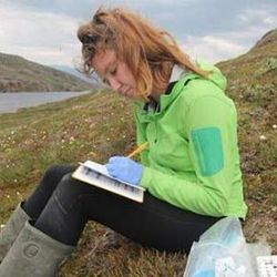 Ocean-Bottom Sediments Tell a Story about Ancient Greenland Summers