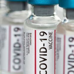 Scientists Find New Way of Predicting COVID-19 Vaccine Efficacy